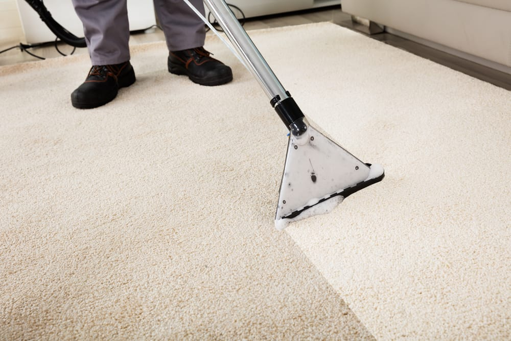 carpet cleaning jackson ms